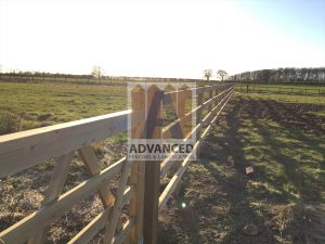 Post & Rail Fence and Timber Field Gate